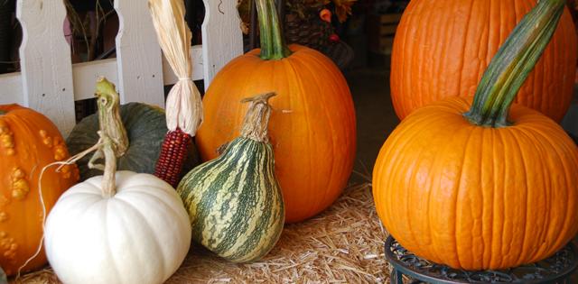 Tips inför Halloween och Fars dag